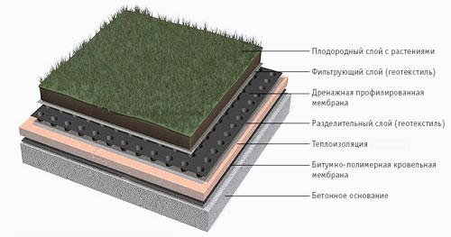 Конкурсный проект на тему: Проект офисного здания с эксплуатируемой крышей в Губкинском городском округе.